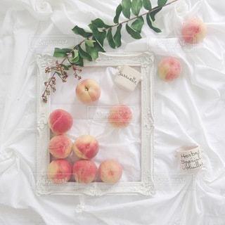 食べ物の写真・画像素材[4089]