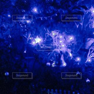 夜の写真・画像素材[438135]