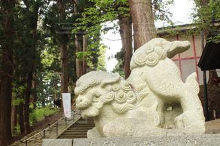 神社の写真・画像素材[478155]
