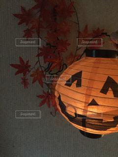 秋の写真・画像素材[279917]