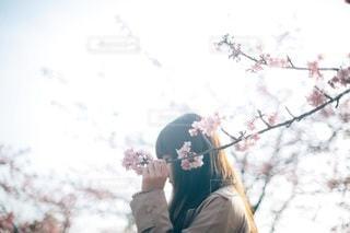 女性の写真・画像素材[4061]