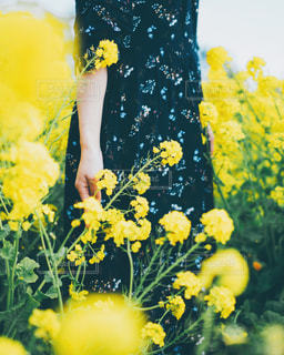 黄色い花の前に立っている女性の写真・画像素材[2806032]