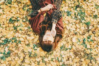 銀杏のじゅうたんの写真・画像素材[2806037]
