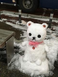 雪の写真・画像素材[322186]