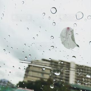 No.282219 雨