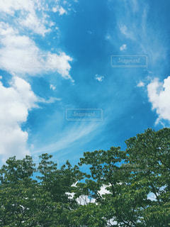 空の写真・画像素材[605490]