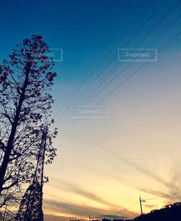 自然の写真・画像素材[281200]