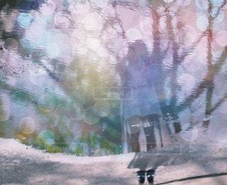 きらきら光る水たまりのの写真・画像素材[3920]