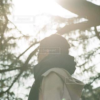 冬の朝日のの写真・画像素材[3867]