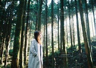 阿蘇の森林と女性の写真・画像素材[40505]