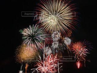 夜空に打ち上がる花火の写真・画像素材[184362]