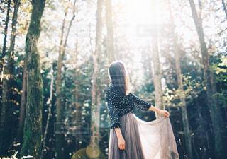 森にさし込む光と女性の写真・画像素材[315120]