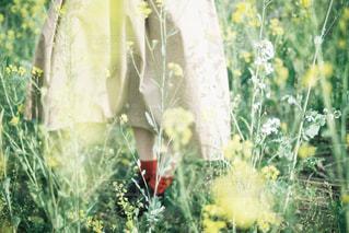 女性の足元と春。の写真・画像素材[1189332]