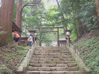 宮崎・天岩戸神社の写真・画像素材[1741249]