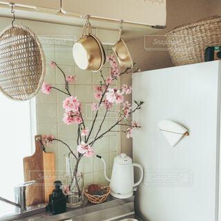 桜のあるキッチンの写真・画像素材[4249804]