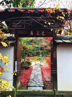 京都の写真・画像素材[281790]