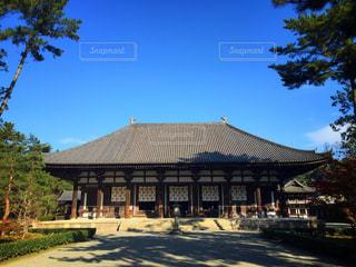 奈良の写真・画像素材[281793]