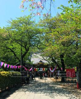寺院 - No.456090