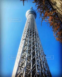 東京スカイツリーを下からの写真・画像素材[2801584]
