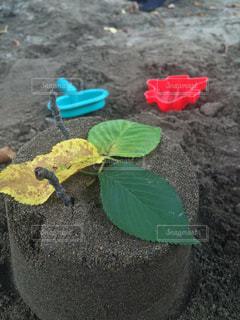 子供の作った砂のケーキの写真・画像素材[324062]