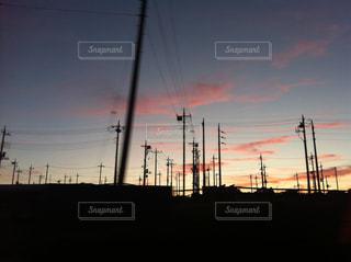 沢山の電柱の写真・画像素材[331452]