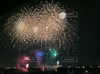大輪の打ち上げ花火の写真・画像素材[331458]