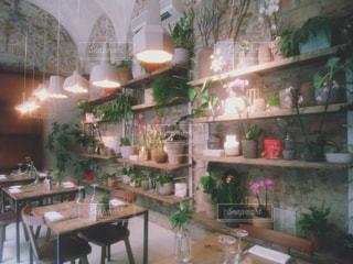 緑溢れるカフェレストラン - No.1227109