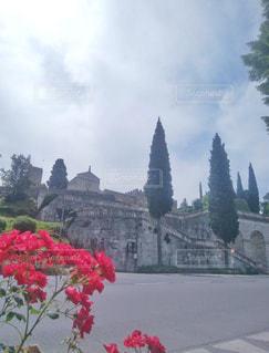 赤い花と教会の写真・画像素材[1231897]