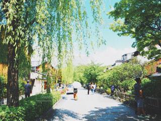 古都京都の小道の街並み - No.892294