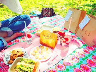 ピクニックの様子の写真・画像素材[892314]