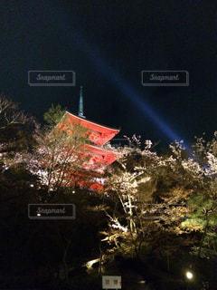 ライトアップの写真・画像素材[282514]
