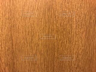 木の写真・画像素材[295492]