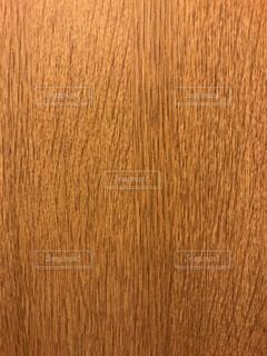 木の写真・画像素材[295493]