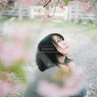 女性,1人,自然,花,桜,ショートカット,女の子,横顔,ポートレート