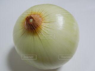 野菜の写真・画像素材[291664]