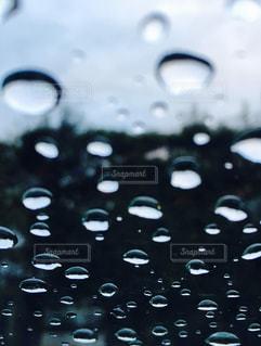 雨の写真・画像素材[293505]