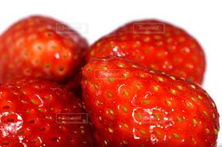 苺の写真・画像素材[1049626]
