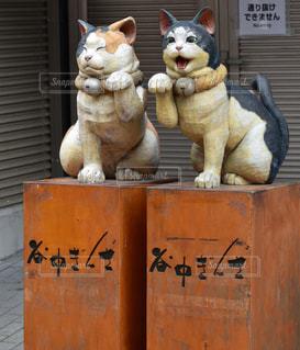 谷中商店街のネコの写真・画像素材[1089817]
