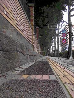 東京大学と不忍通りの写真・画像素材[1137056]