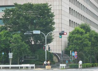 気象庁前の信号の写真・画像素材[3654102]