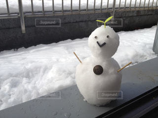 冬の写真・画像素材[289228]