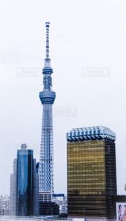 東京スカイツリーとビールの写真・画像素材[297813]
