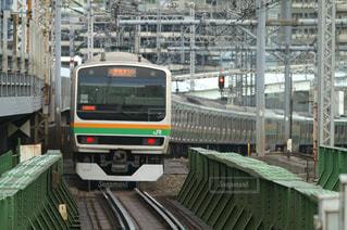 JR東海道線の電車の写真・画像素材[356847]