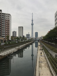 東京の写真・画像素材[481033]