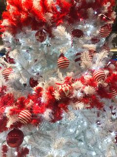 クリスマスの飾りつけの写真・画像素材[876345]