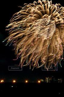 世田谷側の多摩川花火大会の写真・画像素材[889514]
