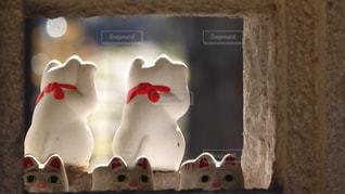 豪徳寺の招き猫の写真・画像素材[889930]