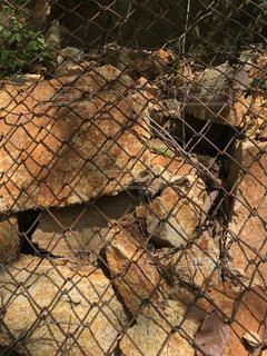金網で食い止められている落石の写真・画像素材[1150733]