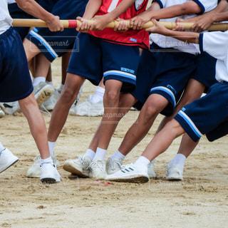 中学校の運動会の棒引き競技の写真・画像素材[1478429]