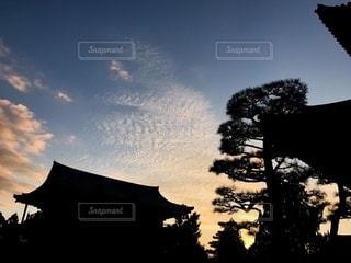京都の初冬の夕暮れの風景の写真・画像素材[2777437]